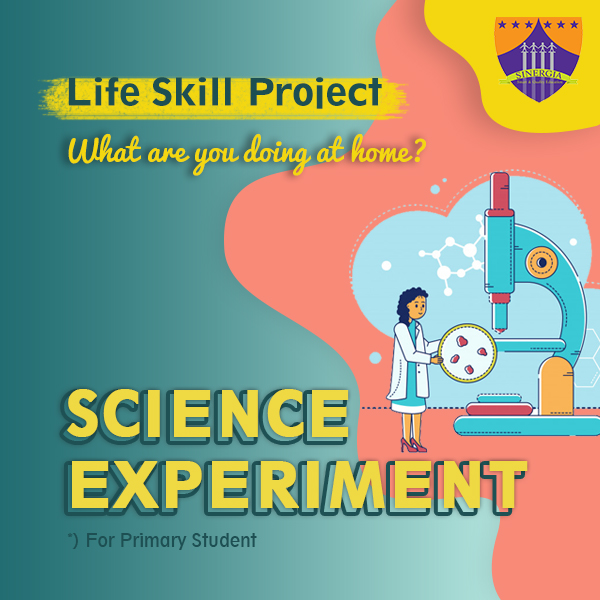 LIFE SKILL PROJECT : EXPERIMENT